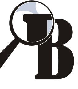 Belgrade Insight logo
